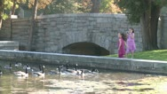 Stock Video Footage of Little girls feeding ducks (6 of 7)