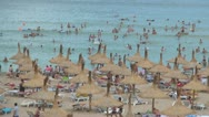 Stock Video Footage of Beach, Busy People on a Beautiful Beach, People Bathing in the Sea