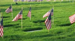 Memorial Day Stock Footage