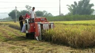 Stock Video Footage of Harvesting machine in China