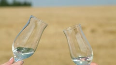 glasses on the field - stock footage