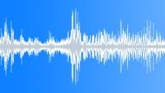 Oystercatcher, Wind, Seabird, Sea, coast Sound Effect