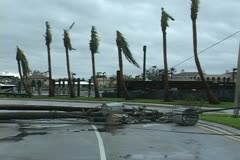 Hurricane aftermath downed power poles Stock Footage
