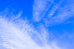 Cirrus. Stock Photos