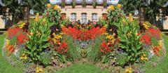 flowered garden - stock photo