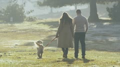 Attractive couple walking with their dog through the forest Stock Footage