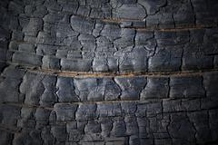 Stock Photo of burned wood texture with vignette