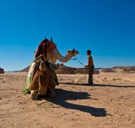 child and camel - stock photo