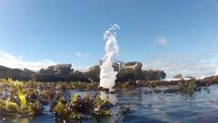 Ocean Geyser blows and covers Camera with Water GFHD Stock Footage