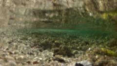 Beach to Underwater shot GFHD Stock Footage