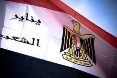 Egyptian revolution flag Stock Photos