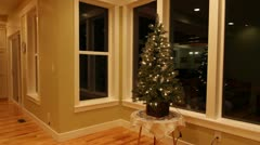 christmas tree in house - stock footage