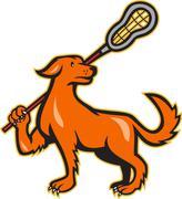 Koira lacrosse kiinni sivukuva. Piirros