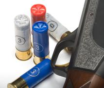 Fowling piece and cartridges. Stock Photos