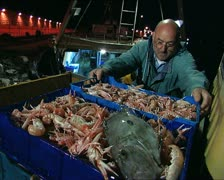 Fishing activity in Italy 15 Stock Footage