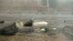 Clear water flows along the river and passes by rocks Stock Footage