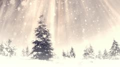 New Year Forest background 26 Stock Footage