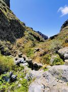 barranco del infierno(hell's gorge), tenerife, canary islands - stock photo