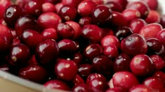 Cranberries rotating - stock footage