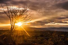 Spectacular Desert Sunrise Stock Photos