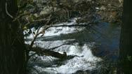 Tilt waterfall rapids Stock Footage