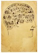 old phrenology illustration - stock illustration