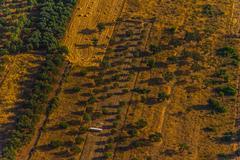 dalmatia aerial - stock photo