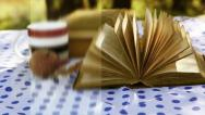 Title Sequence INTRO : Wind turn old Book Pages on the table in warm sunny Day Stock Footage