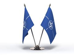 miniature flag of nato(isolated) - stock illustration
