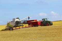 Wolds harvesting 3 Stock Photos