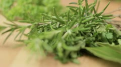 Rosemary Herb, rack focus - stock footage