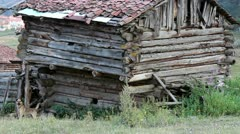 Anatolian old shack villager house in the forest Stock Footage