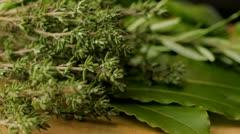 Freshly picked herbs Stock Footage