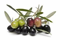 green and black olives. - stock photo