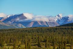 alaskan landscapes - stock photo