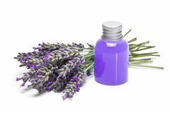 lavender gel over white background. - stock photo