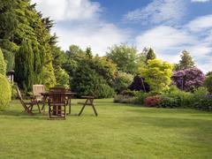 English garden Stock Photos