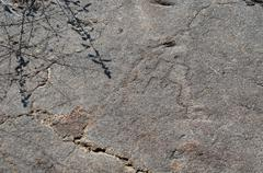 petroglyphs, rock carvings - stock photo