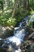 Waterfalls in conifer forest Stock Photos