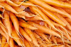 carrots, 1030852.jpg - stock photo