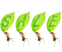 ant to sell - stock illustration