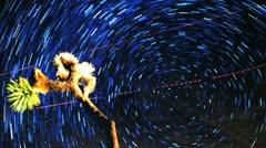 Star Trail Vortex Timelapse Time Warp Joshua Tree Stock Footage