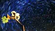 Star Trail Vortex Timelapse Time Warp Joshua Tree Stock Footage