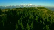 Stock Video Footage of flight over forest in mountains