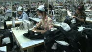 Stock Video Footage of Textile Factory Workers: Dolly type move along aisles of workers