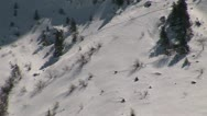 Stock Video Footage of Chamois crossing avalanche field