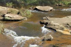 Fast flowing creek Stock Photos