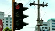 Traffic Signal Light, Semafor, Safety, Red Yellow Green Stock Footage