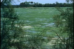 The Island of Torcello outside Venice, swamp land, medium shot Stock Footage