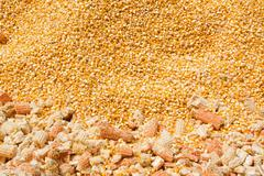 Yellow corn grain background Stock Photos